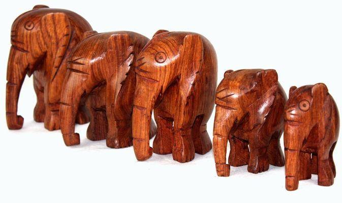 Troupe d'élephants E2