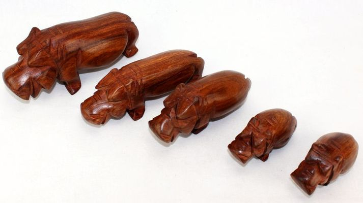 Troupe hippopotamesTRH1b