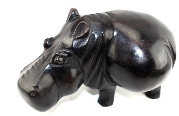 Hippopotame H1