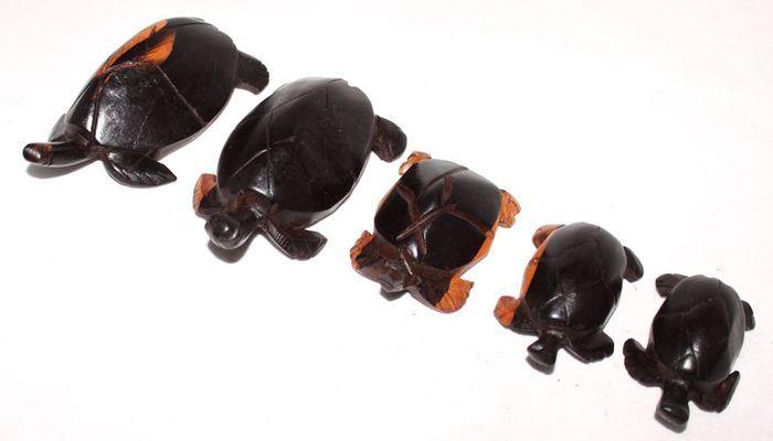 Série 5 tortues en bois ébène TSM5